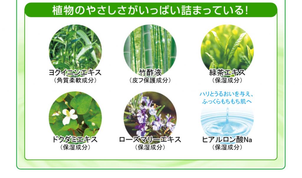 植物のやさしさがいっぱいつまってる!
